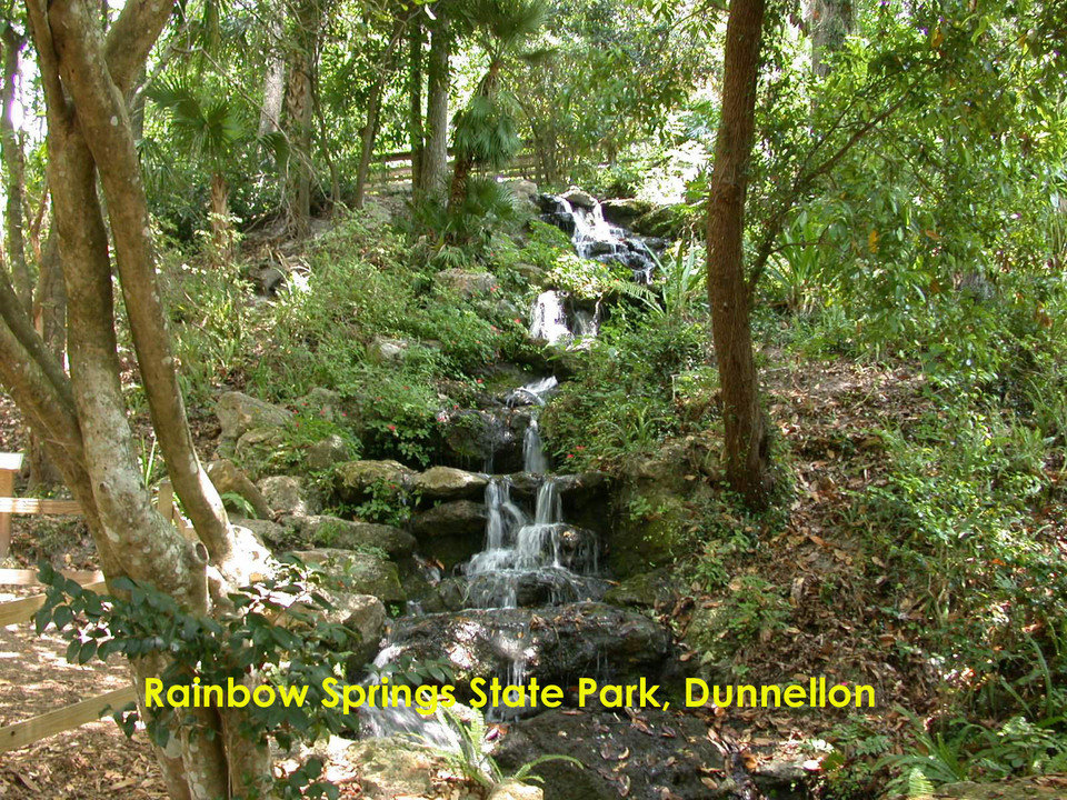 Rainbow Springs Dunnellon Fl 34432 Find A Spring